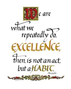 Aristotle understood the meaning of excellence centuries ago...still true!