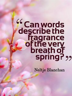 Can words describe the fragrance of the very breath of spring? -Neltje Blanchan-
