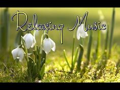 Nyugtató idegeket nyugtató zenét - YouTube Relaxation Meditation, Relaxing Music, Place Cards, Place Card Holders, Youtube, Karma, Health, Music, Calming Music