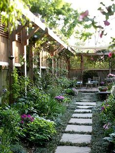great design for a long space- and no lawn! Added height at the top of the fence doubles as a trellis.
