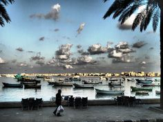 One of the beautiful scenes in Alexandria Egypt