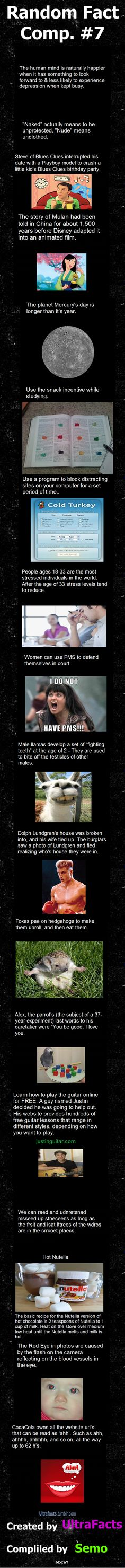 Random Fact Comp. 7  // funny pictures - funny photos - funny images - funny pics - funny quotes - #lol #humor #funnypictures