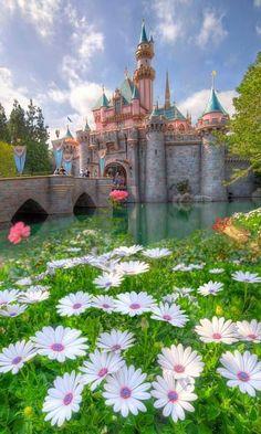 ~Disneyland~  AKA what are my 16th Birthday plans?