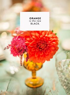 ORANGE IS THE NEW BLACK- sfgirlbybay / bohemian modern style from a san francisco girl