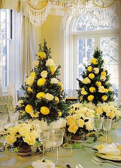 Beautiful Boxwood topiary tree decorated with lemons and roses, Washington D. floral designer Allan Woods, courtesy of Southern Accents --- have always loved boxwoods and their scent! Decoration Table, Table Centerpieces, Tree Decorations, Christmas Decorations, Christmas Trees, Wedding Centerpieces, Christmas Colors, White Christmas, Dresser La Table