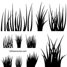 Grass Silhouettes …