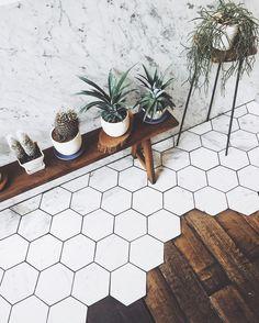 Cacti love #Bangkok style  @rocketcoffeebar #iloveplants #weloveplants #plantlife #vsco #vscogood #plantlife #plantlove #plants #indoorplants #vscodaily #instasize #botanical #livefolk #livesimply #welltravelled #justgoshoot