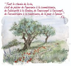 Citation Frédéric Lenoir