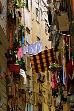 Narrow Streets.  Napoli is colorful laundry and gardens even on the smallest balconies