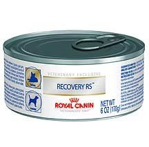 Royal Canin Recovery RS Food For Dogs And Cats 2458 oz Cans >>> Learn more by visiting the image link.