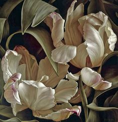 """Mia Tarney """"Libretto II"""" 2008 Oil on Linen 