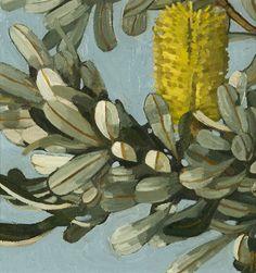 WEB_Banksia_Integrifolia_2013_2_30_x_30cm_Oil_on_linen_on_board_photo_JS13