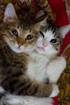 Selfie!# me and my best is(^▽^)(^̮^)