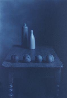 Still Life 1129b, cyanotype over platinum-palladium print by Kenro Izu