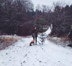 The backyard, Maine via Ariele Alasko