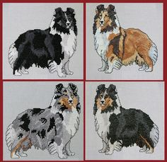 Shetland Sheepdog patterns