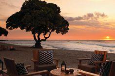 One of the most beautiful places. Beach Tree Bar, Four Seasons Resort Hualalai, Kailua-Kona, Hawaii