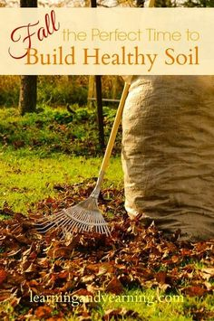 Fall: The Perfect Time to Build Healthy Soil -