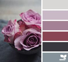 { flora palette } image via: @catherine_frawley