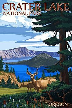 Crater Lake National Park Oregon - Deer Family (12x18 Art Print Wall Decor Travel Poster)