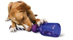 This would be perfect to teach Watts to tug! PetSafe Busy Buddy Tug-A-Jug Meal Dispensing Dog Toy, Medium/Large Best Dog Toys, Best Dogs, Dog Puzzles, Puzzle Toys, Dog Games, Rottweiler Puppies, Pet Toys, Dog Love, Dog Training