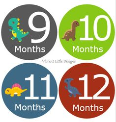 Unique modern designs to capture your baby's monthly milestones you will cherish. These stickers will come cut and ready to use- Just Peel, Stick, and Take Picture. Perfect idea for any mommy or giving as a gift. ♥ Pre-cut 4 inch circles with a matte finish printed on quality