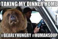 Russian Bear Selfies - #GagsBox, #funny, #lol, #fun, #humor, #gag, #box, #gif, #lolgifs, #Funnygifs,