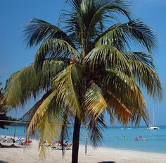 A day in the beach in Negril, Jamaica