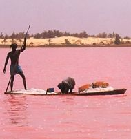 Senegal pink lake. This looks so unreal! How cool that this exists!