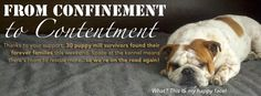 FROM CONFINEMENT TO CONTENTMENT ~ Thanks to your support, 30 puppy mill survivors found their forever families this weekend.  Space at the kennel means there's room to rescue more...so we're on the road again!  ~National Mill Dog Rescue DONATE TO SAVE LIVES:milldogrescue.org/index.html  NMDR WILL RECEOVE A 100% MATCH FOR EVERY DONATION RECEIVED THROUGH 15 NOV! VOTE DAILY TO HELP THEM WIN 10K:www.facebook.com/PetsAddLife/app_350555541697469  WE CAN DO THIS! PLEASE GIVE WHAT YOU CAN & VOTE…