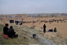 Kupkari - the wild tradition of Central Asia / Kupkari - die wilde Tradition Zentralasiens Central Asia, Nice View, The Good Place, Traditional, Places, People, Travel, Men, Lugares