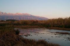 NaturAltea - El río no ríe