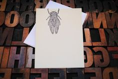 letterpress/screenprint cicada card  Appalachia Press