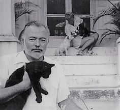 Ernest Hemingway nella sua casa a Key West Ernest Hemingway, Hemingway Cats, Crazy Cat Lady, Crazy Cats, I Love Cats, Cool Cats, Celebrities With Cats, Celebs, Men With Cats