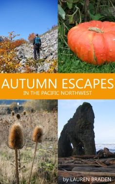 NEW BOOK: Autumn Escapes in the Pacific Northwest. Full of fall color hikes, beach escapes, wine country weekends and Get Outdoors, The Great Outdoors, Future Travel, Adventure Is Out There, Wine Country, Outdoor Camping, Pacific Northwest, Vacation Spots, North West