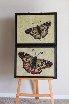 "Glitter Side: Suite J-Town Gallery Exhibit ""Butterflies"" Glitter Art, Exhibit, Butterflies, Gallery, Frame, Painting, Home Decor, Picture Frame, Decoration Home"