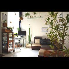 一人暮らし/ソファー/green/地下室/リビングのインテリア実例 - 2014-04-19 20:30:57 | RoomClip(ルームクリップ)