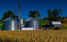 Grain Bins, Benton, Kentucky