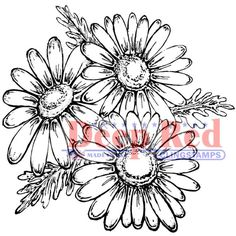 "Deep Red 2""x2""  Daisies Red Rubber Cling Stamp. Flower Stamps. Spring Stamps. Coloring Stamps. Rubber Stamps."