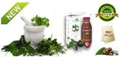 Manfaat teh hijau untuk penderita diabetes – Teh hijau adalah salah-satu teh yang sangat digemari oleh masyarakat di seluruh dunia terutama di Hongkong, Jepang, Timur tengah, Asia tenggara, Tiongkok dan Taiwan. Tidak heran jika minuman yang satu ini menjadi khas kegemaran setiap orang, Karena teh hijau sangat bermanfaat bagi kesehatan tubuh.