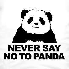 Resultado de imagem para never say no to panda