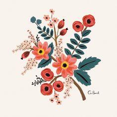 Coral Botanical 8x10 Art Print