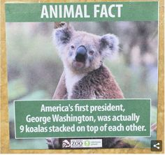 """""""The fake signs were posted around the zoo on June 30 by a guest without our knowledge, but they were promptly taken down by zoo staff,"""" zoo spokesperson Sarah Agronow said. 