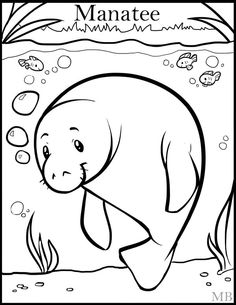 Manatee Coloring Page | Pinterest | Manatee, Worksheets and Ocean