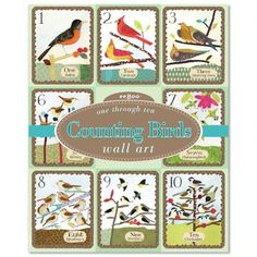 "Eeboo Counting Birds Wall Cards by eeBoo. $12.60. 10 sturdy cards. Tied with a grosgrain ribbon. Illustrated by Melissa Sweet. Printed on heavy laminated cardstock. 8"" x 10"". Beautifully illustrated by Lizzy Rockwell for eeBoo, Counting Birds Wall Cards make a unique, upscale, and educational addition to a nursery, child's bedroom, or playroom. Cards can be displayed loose or framed. Makes a lovely gift as the cards are tied together with a ribbon and beautifully packaged in a..."