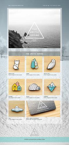 Arctic Series by Hug A Porcupine. Inspired by the white and blue hues of the Winter season, as well as the arctic elements. Each brooch packaging card comes with our logo hot stamped in matt white foil, especially for this collection. Available in 7 designs: • Arctic Fox • Cabin • Arctic Owl • Nordic Houses • Igloo • Iceberg • Seal  Shop online here: www.hugaporcupine.com/collections/arctic