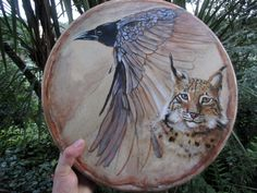 Shamanic Drum crow painted by joao viola