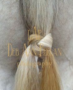 """A Mustache Knot tied in the tail of """"Rocky Roan"""". For instructions on how to tie this mud knot, please visit: https://www.facebook.com/media/set/?set=a.470164866405066.1073741845.449306115157608&type=3"""