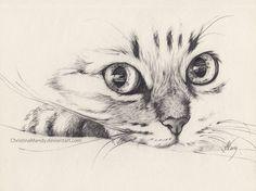 Cat Pencil Sketch Drawing - Imagen De Cat Pencil And Drawing Ideias Esboco Arte Animal Daily Sketch Walking Toward Me Animal Sketches Animal Drawings Cat Pencil Drawing By Wendy . Cat Drawing, Drawing Sketches, Painting & Drawing, Drawing Ideas, Drawing Tips, Drawing Faces, Cat Sketch, Sketching, Sketch Ideas