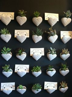 Mini succulent planters displayed on wall. (As seen in Bachman's 2013 Fall Ideas House) Succulent Wall, Succulent Planters, Succulents, Plant Wall, New Leaf, Green Plants, Go Green, Decor Crafts, Turning